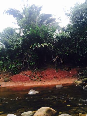 Munay Selva, Turismo Vivencial! - Chasuta