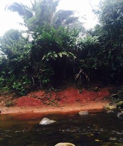 Munay Selva, Turismo Vivencial! - Chasuta - Mökki