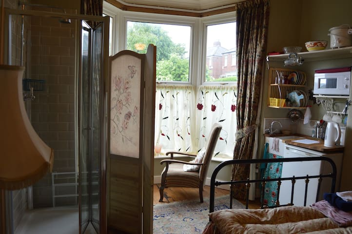 Groundfloor tasteful vintage self contained bedsit - Sheffield