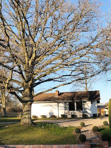 Rural Interior Designed Cottage