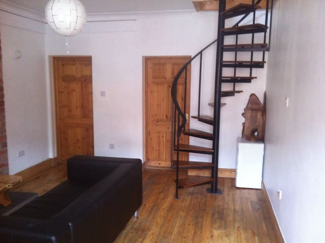 Great room in the heart of Dublin - Dublin - Casa