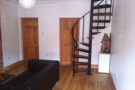 Great room in the heart of Dublin - Dublin - Haus