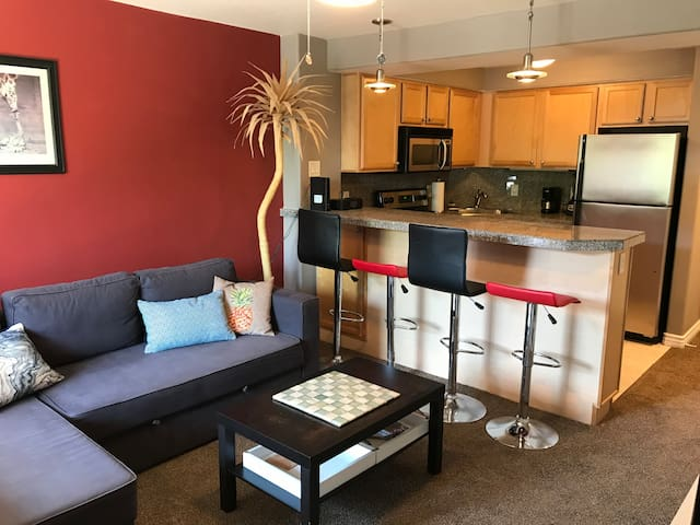 Beautiful Studio close to Downtown!