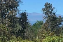 A distant View of Mauna Kea from the backyard. It's 51 miles away!