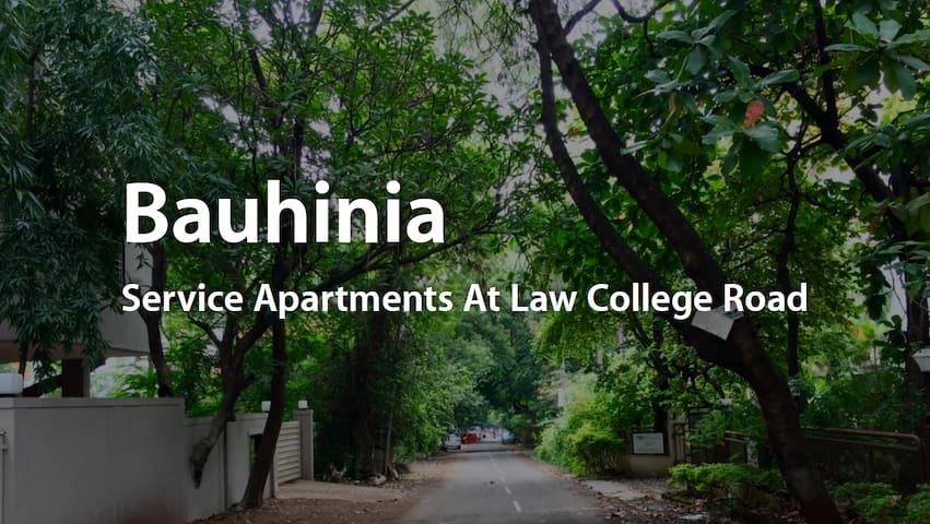 Bauhinia, Club 2