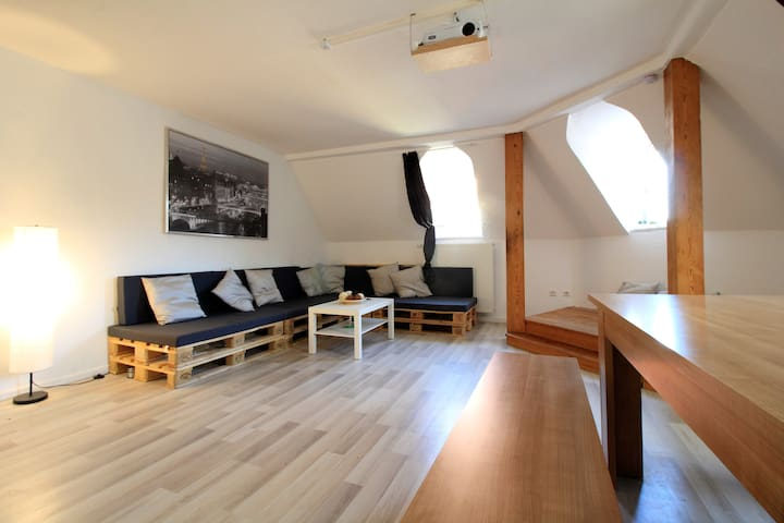 Spacious apartment for large groups - centre 600m