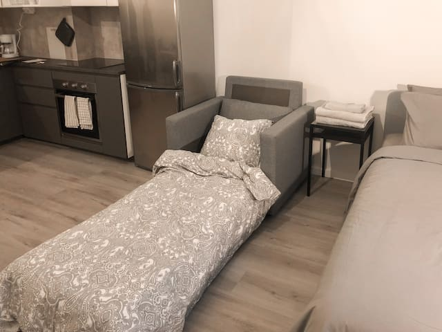 Pullout Sofa Sleeps 1 person
