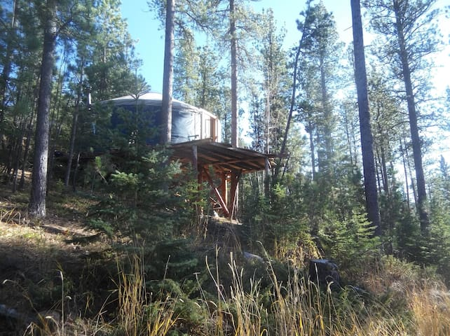 Treehouse Yurt Lead Black Hills SD Mickelson Trail