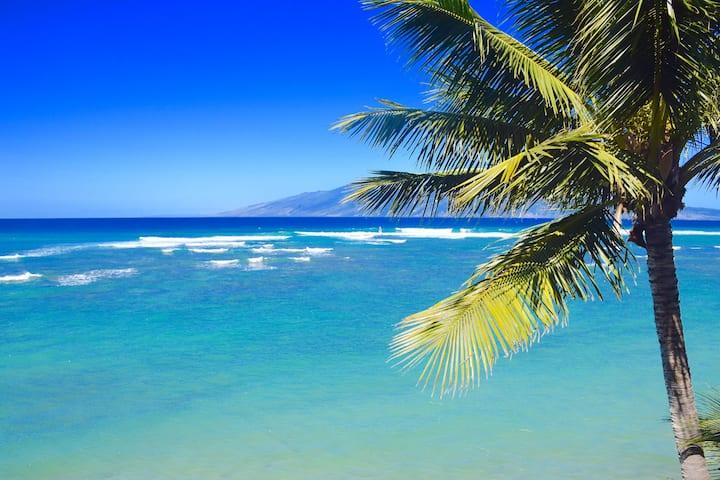 Livin the Aloha Dream