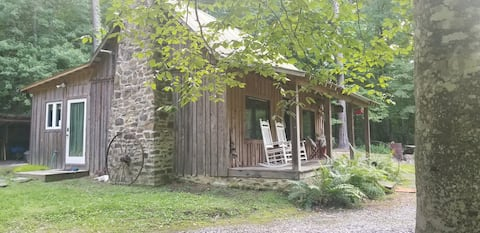 Tranquil cabin on Robbins Nest Pond - New Listing