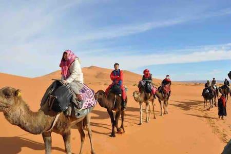 Merzouga Desert Camel Trek