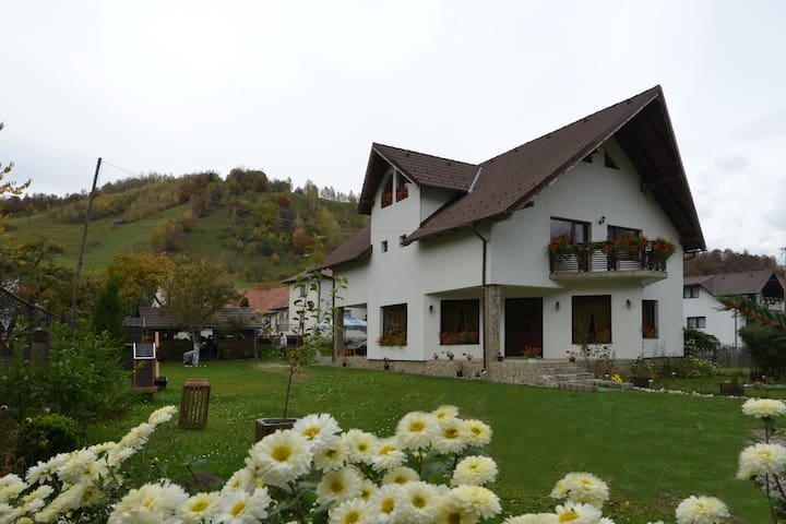 The Joy of the Mountain - Șimon - Villa