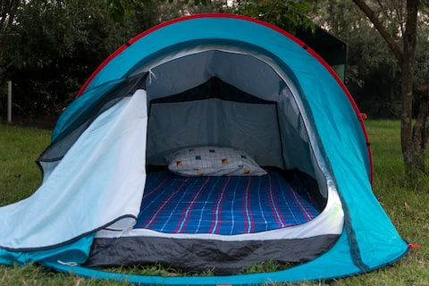 Talek Bush Camp - Camping Tents
