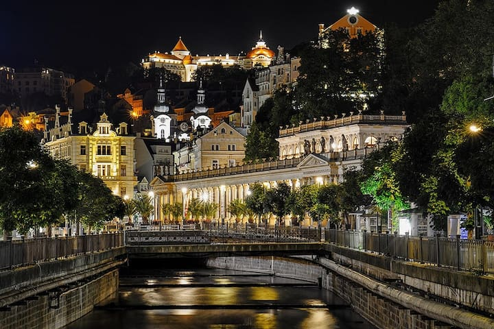 Spa Apartment Karlovy Vary