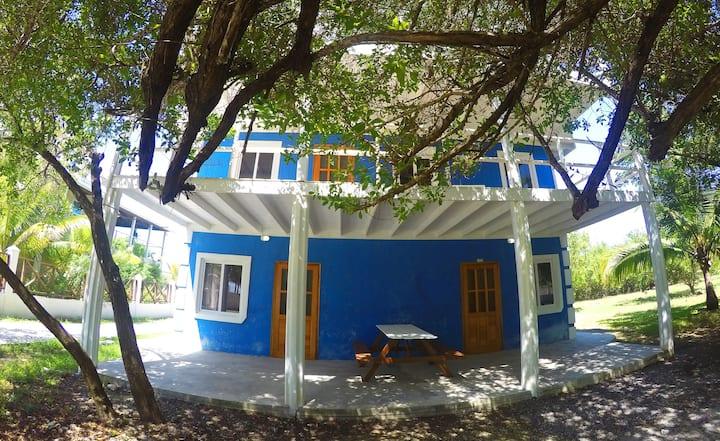 Blue Dream Starfish apartment