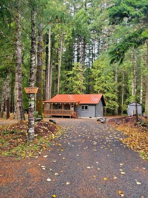 Kimmie's Cabin