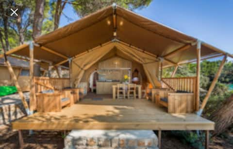 Glamping In the middle of nature of Surinam