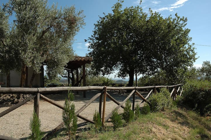 Chalet among olive trees with view of the sea