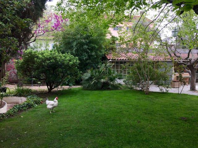 Dans le jardin il fait toujours frais, même en plein été.