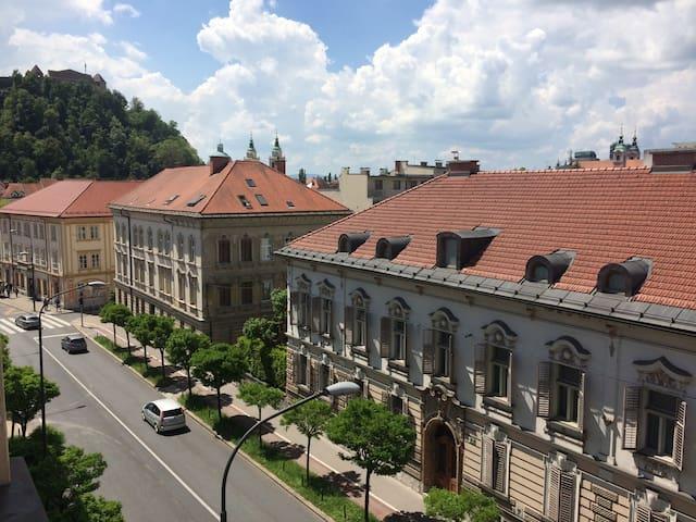 Center of Ljubljana (best location) w/ Great View