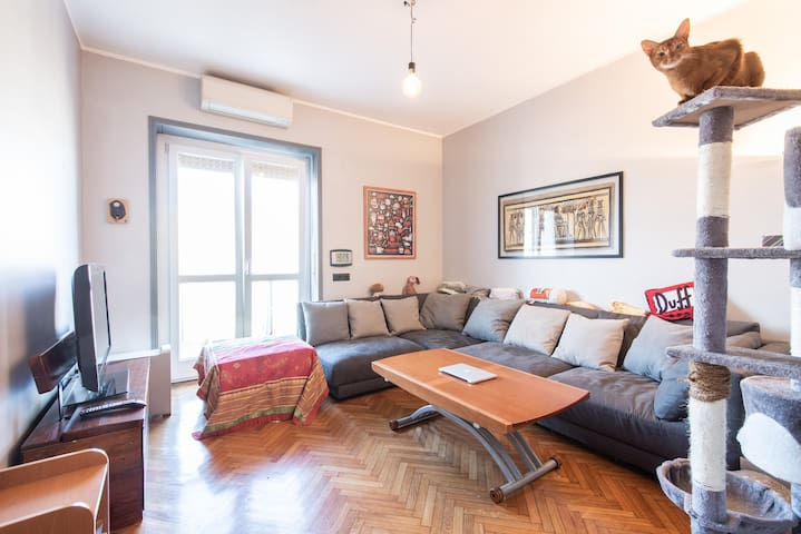 Bright apartment near Milano Center