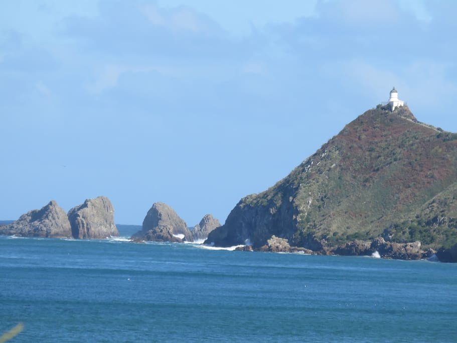 picture of nugget point lighthouse 15 min drive from our place
