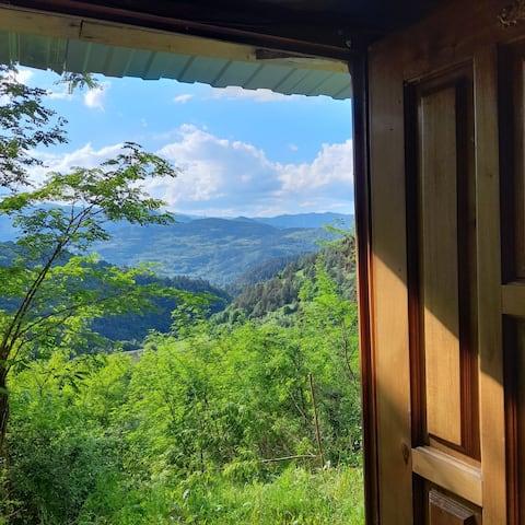 Remote forester wagon in mountains  , Transylvania