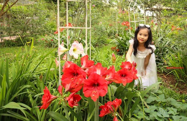 Bachlien Flower Homestay