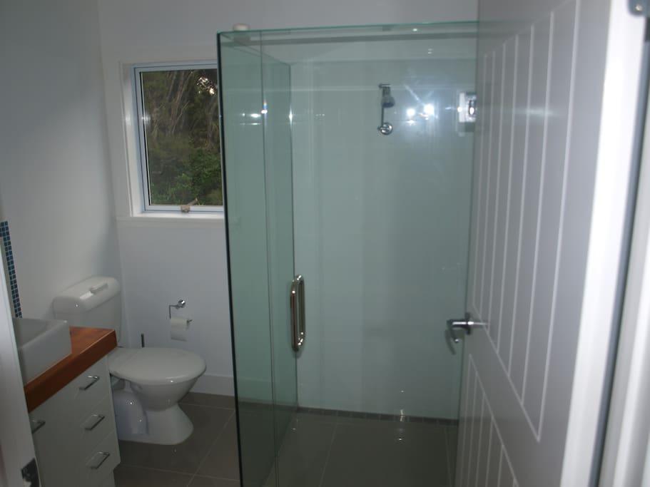 larger than normal shower room