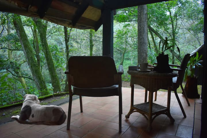 Cabaña Tomages 2 pet-friendly en Xalapa