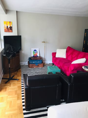 Cute, quirky, large apartment in hipster Parkdale