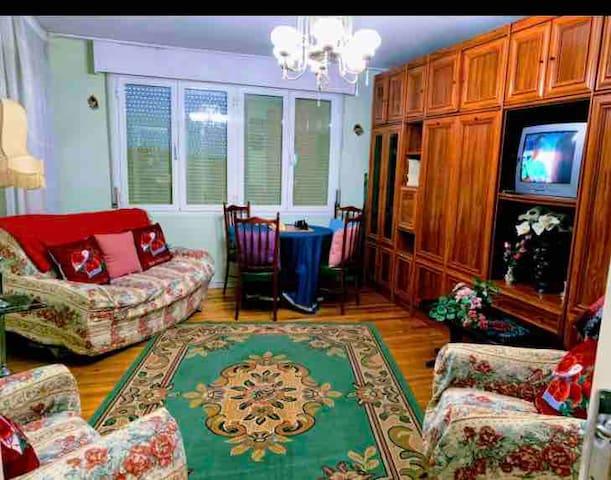 Salón El sofá es cama Del armario salen 2 camas completas individuales de 1,10m