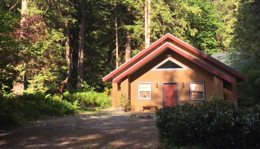 Relaxing Mt Baker Cabin on Double Snowline lot