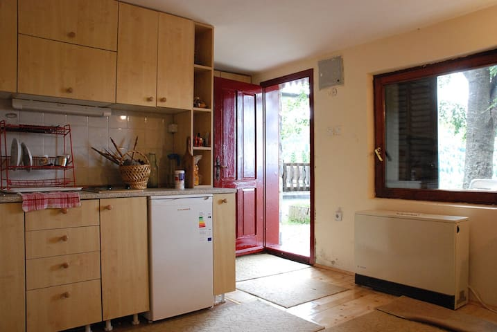 Cozy Studio Apartment in Private House, Kopaonik