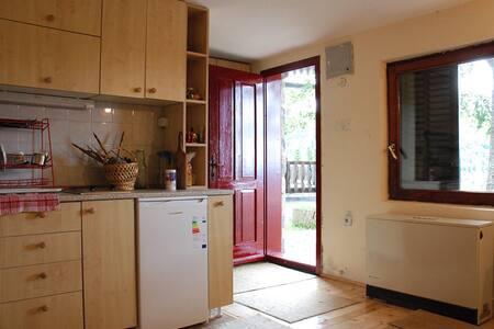 Cozy Apartment, Kopaonik - Kopaonik
