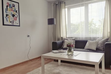 Comfortable apartment in Liepaja - Apartment