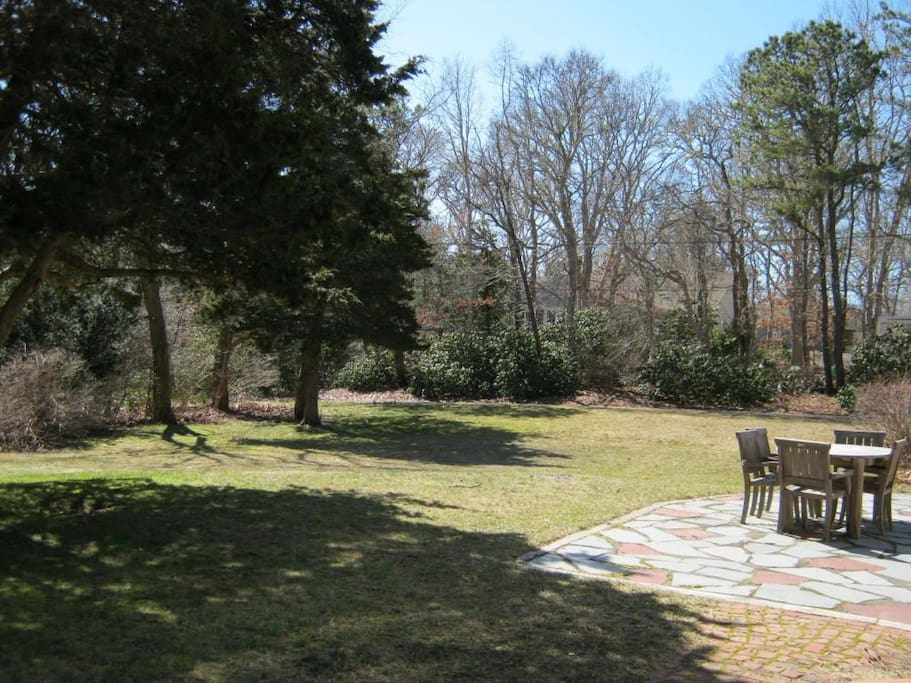 Large private backyard for family fun