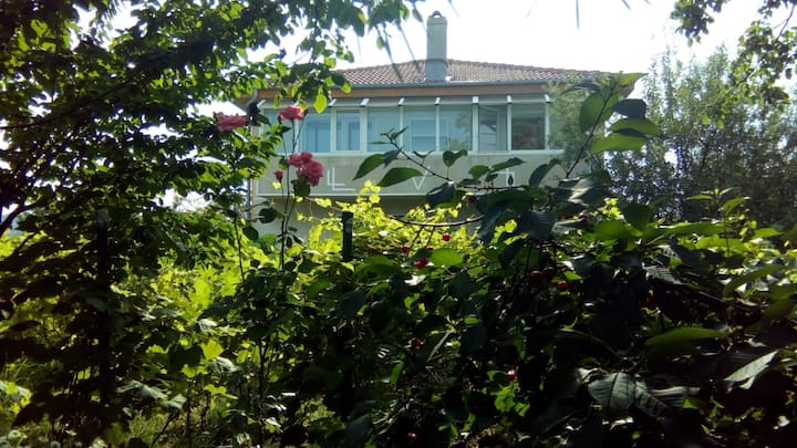 CHESTNUT TREE VILLA (NEAR BUCHAREST INTL AIRPORT)