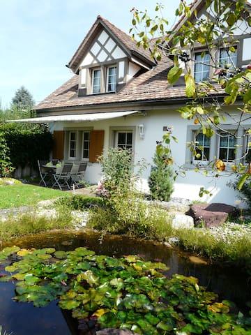 Schöne 2 Zimmer Wohnung in Landhaus - Nürensdorf - Apartament