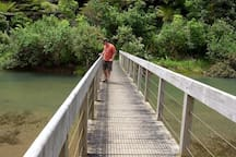 This little walking bridge is on the way around Leigh Harbour.