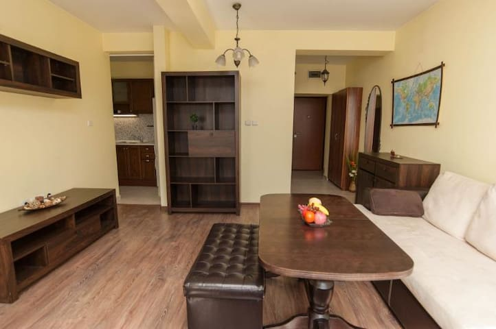 Luxury city center apartment