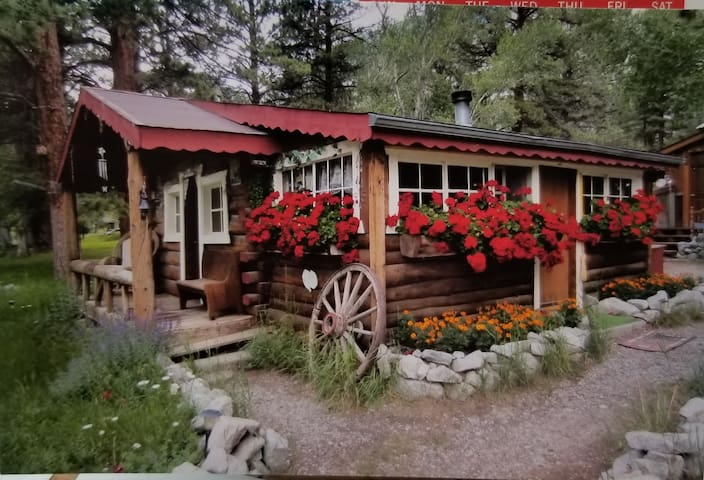 Connie's Mountain Orchid Cabin, Chalk Creek Canyon