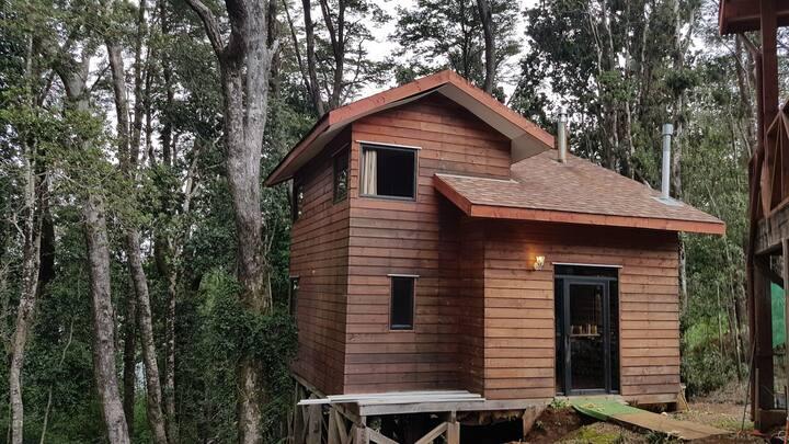 Cabaña en Valdivia
