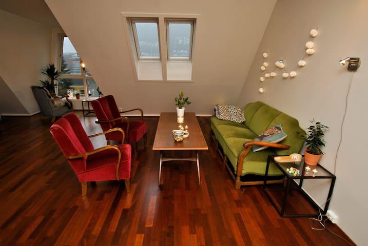 Bright, clean, spacious enjoyable apartment - Bergen