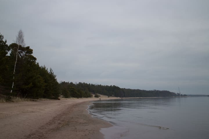 Another snapshot of the beach.