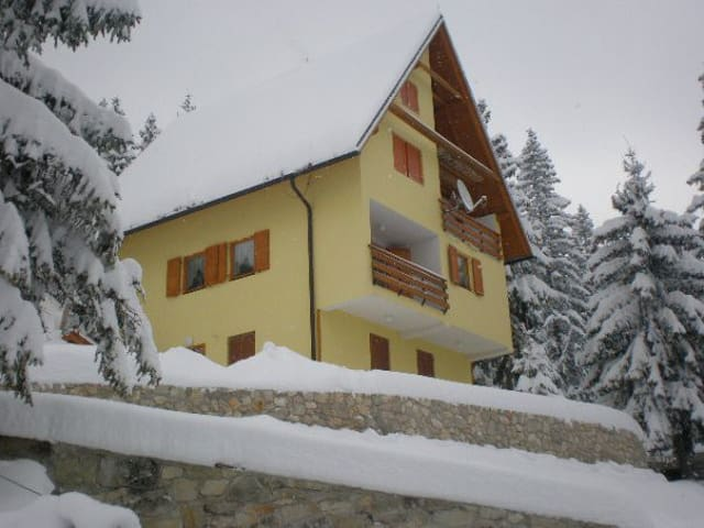 Villa Dana 1 Vlasic-Babanovac - Šišava - Serviced apartment