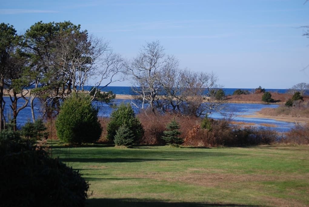 Huge 2-Acre Yard with Marsh Views (This is High Tide)