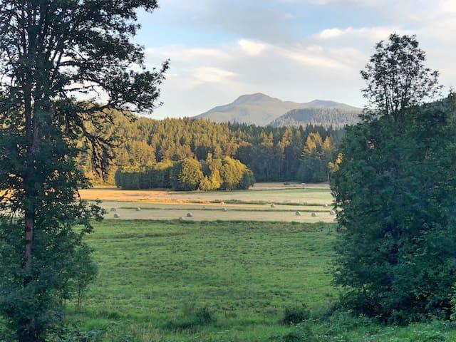 Big Fir Retreat - View, Wi-Fi, & Pet Friendly