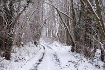 Chemin de randonnée autour de la maison