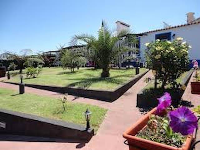 Casa Magnólia - Ponta Delgada  - House